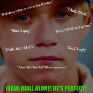 Stop Hating Niall