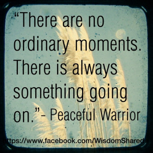 Ordinary moments, #Peaceful Warrior, #Quote #words