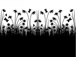 Twitter Backgrounds Quotes Black Background quo... twitter