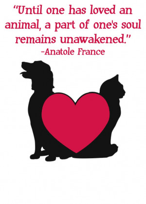 Quotes about animals by Anatole France