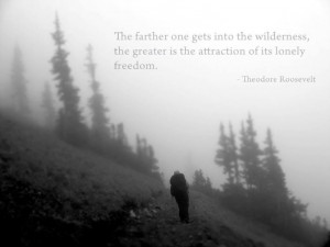 Theodore Roosevelt wilderness quote