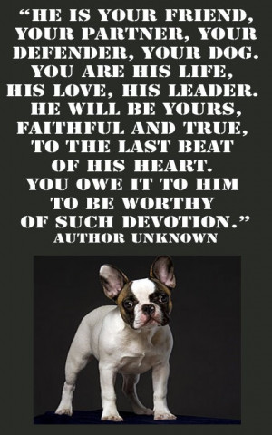 HE IS YOUR FRIEND, YOUR PARTNER, YOUR DEFENDER, YOUR DOG.YOU ARE HIS ...