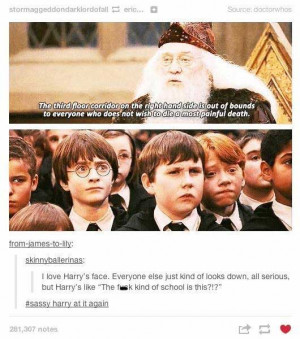23 Funniest Things Tumblr Has Ever Said About Harry Potter