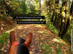"""Whoever said a horse was dumb, was dumb. """" -Will Rogers"""