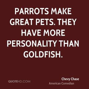 Parrots make great pets. They have more personality than goldfish.
