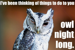 Night Owl Sayings http://jenrarey.blogspot.com/2012_01_08_archive.html