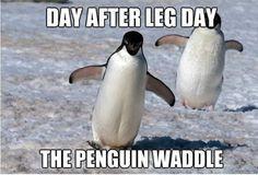 Leg Day Quotes