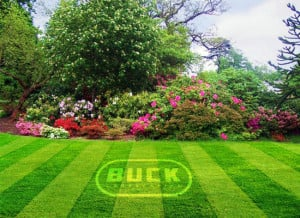 Buck Landscaping is a comprehensive lawn care service in Chapel Hill