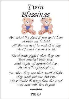 Twins Blessings Poem