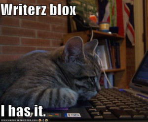 funny-pictures-cat-has-writers-block - funny-pictures-cat-has-writers ...