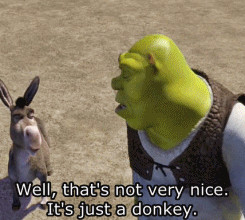 peace donkeys shrek self confidence donkeys funny inspirational quotes ...