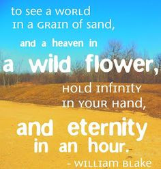 To see a world in a grain of sand - William Blake More