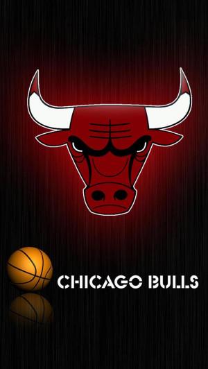 ... Pictures chicago bulls wallpaper 2011 chicago bulls 2011 wallpaper
