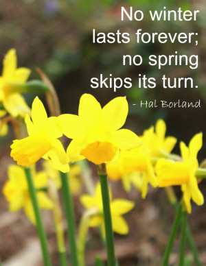 No winter lasts forever; no spring skips its turn. Hal Borland Quote
