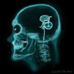funny x ray cartoon pictures