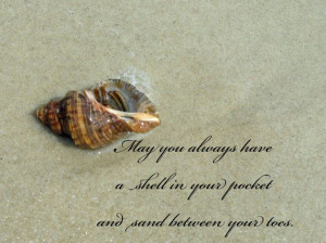 Digital JPEG Download Hermit Crab with quote by GulfCoastInspired, $5 ...