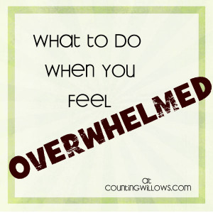 Overwhelmed With What...