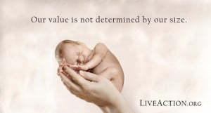 Pro-Life Quotes, Facts, and Arguments in Visual Graphics - Live ...