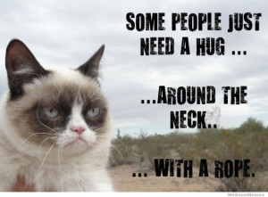 Some people just need a hug… around the neck… – Grumpy Cat
