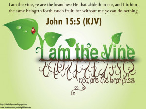 Quotes Bible, God, Bible Quotes, Vines, Jesus, Bible New Testament ...