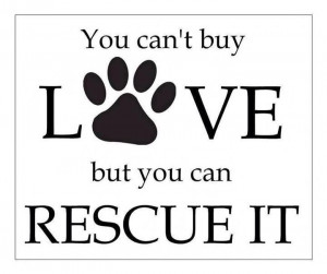 You Can't buy LOVE. But, you CAN RESCUE them.