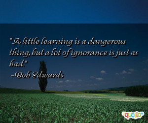 little learning is a dangerous thing, but a lot of ignorance is just ...