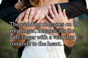 Cute Wedding Quotes