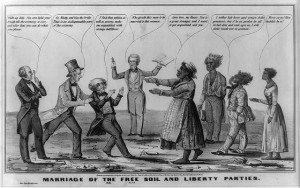Abolitionism and Political Mobilization