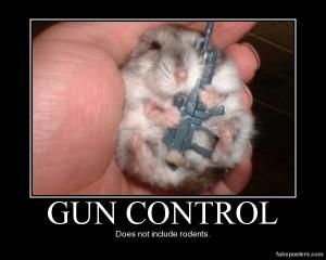 Gun Control - Demotivational Poster