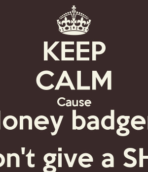 KEEP CALM Cause Honey badger Don't give a SHIT