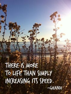 ghandi #quote I'm all for slowing down! :) More