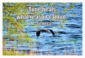 Time heals what reason cannot.