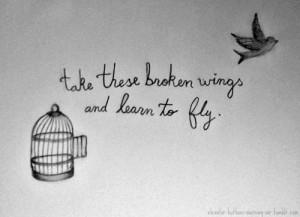 Trova e segui post taggati #take these broken wings and learn to fly