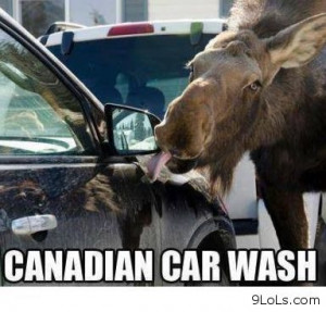 Canadian car wash - Funny Pictures, Funny Quotes, Funny Videos - 9LoLs ...