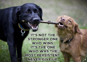 Never Underestimate Someone's Determination.