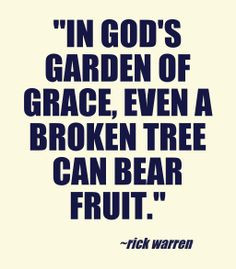 ... , even a broken tree can bear fruit. --Rick warren ~ quotes & wisdom