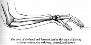 The Arch Structure of the Arm