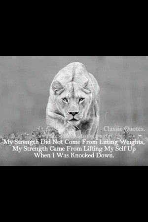 Big Cat, Female Lion, Animal Photography, Strength Quotes, Lion Quotes ...