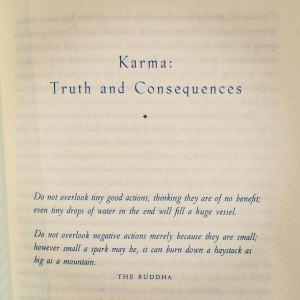 Buddha Quotes On Karma #2