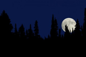 blue-moon.jpg?1