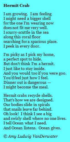 Hermit Crab - Mask Poems