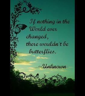 Butterfly Quotes (34)