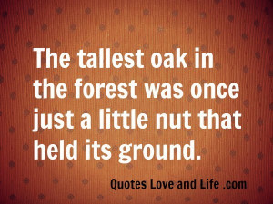 nature #poetry #oak tree