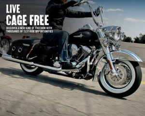 Live Cage Free. Discover a New Kind of Freedom with Thousands of Test ...