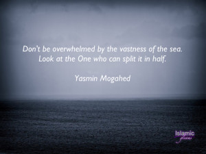 Don't Be Overwhelmed By The Vastness Of The Sea
