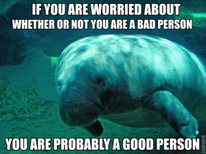 Have Some Calming Manatee: