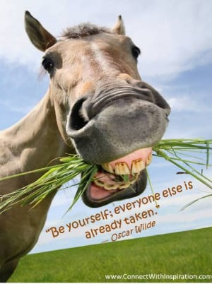 oscar wilde inspirational quote about life funny horse be yourself