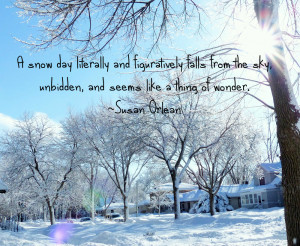 snow Susan Orlean Quote