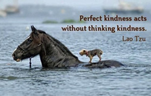 acts without thinking kindness picture quotes