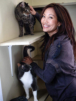 Dancing with the Stars Carrie Ann Inaba Starts Web Show for Cats